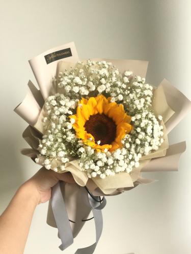 Sunflower bb