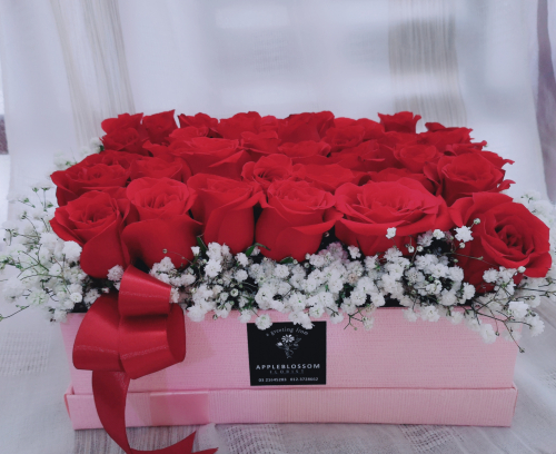 Red Roses In Pink Box