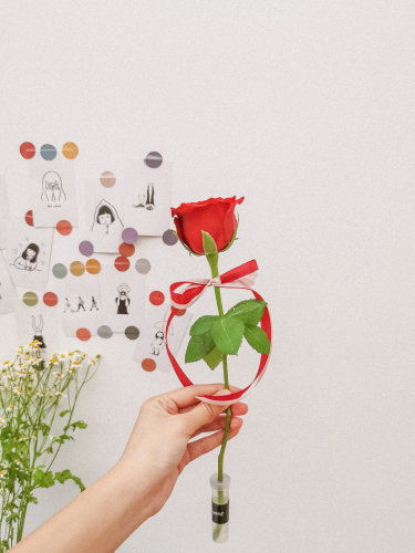 Single Stalk Rose (company event)