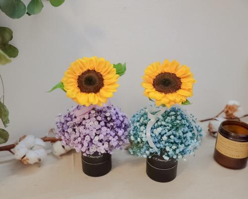 Sunflower BB tree flower 向日葵小花树