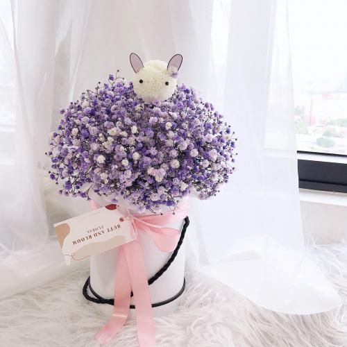 Baby Breath Bunny Box (Purple)