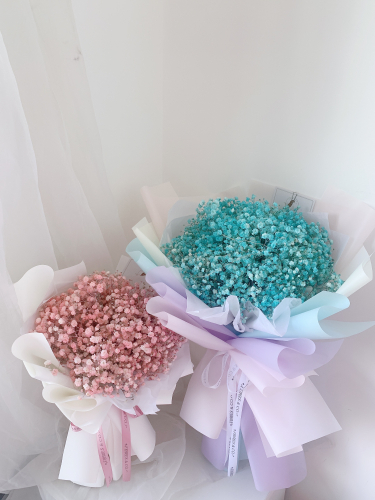 BABY BREATH | Turquoise Colour