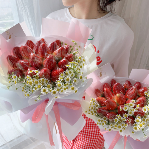 Rainbow Strawberry | S size