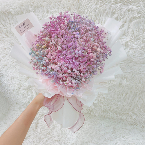 Rainbow Color Baby Breath (Small size)