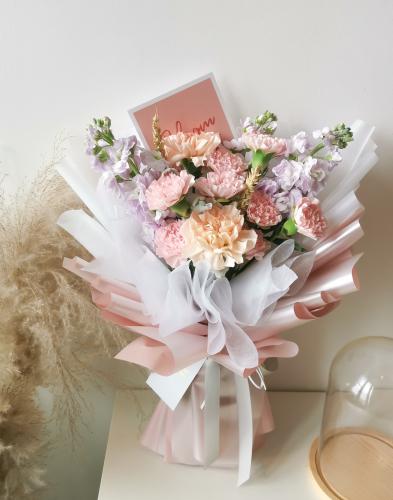Pastel Sweet Carnation