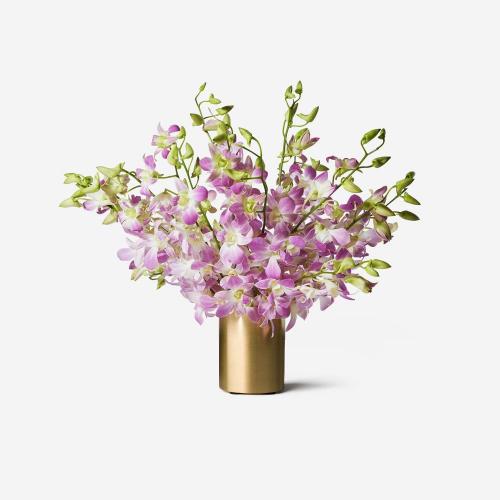 Violet Dendrobium Cut Orchid