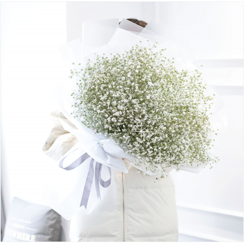 Giant Baby Breath Bouquet