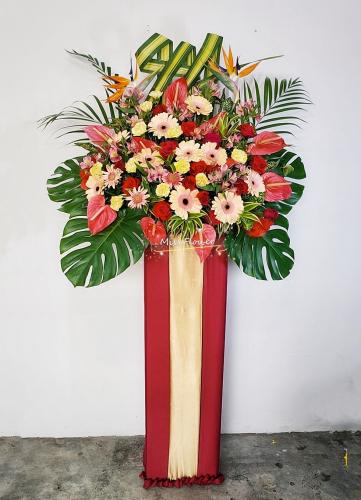 Opening Flower 03