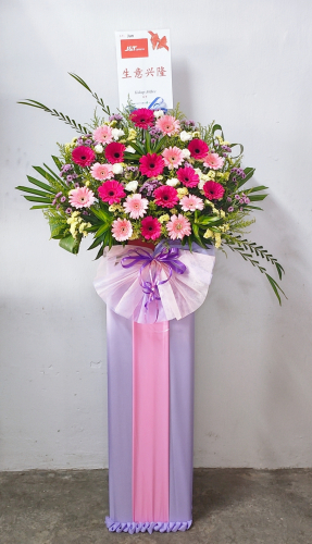 Opening Flower 15