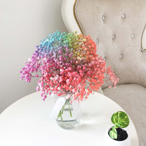 Fresh Flower | Colorful BB in vase