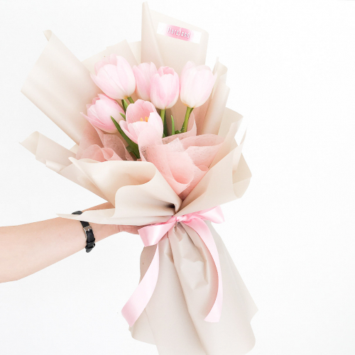 Fresh Flower | Pink Tulip
