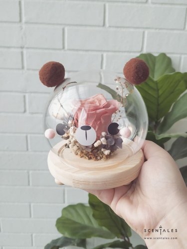 Wally The Bear Preserved Flower Glass Globe