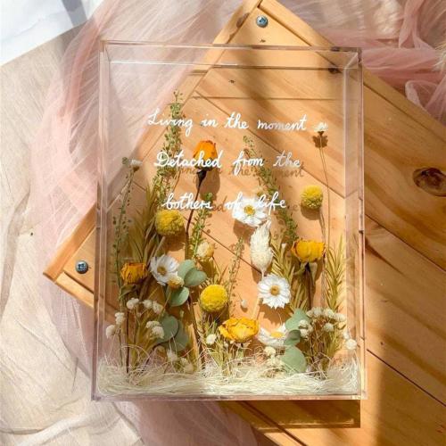 Stella Acrylic Box Frame