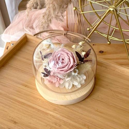 Selene Preserved Glass Globe