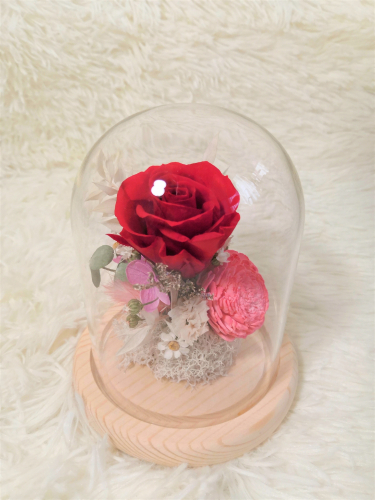 ❤️ Fall in Love ❤️ Bell Jar (Small Size)